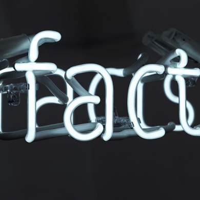 fake facts ansicht01